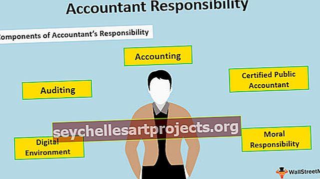 Λογιστική ευθύνη