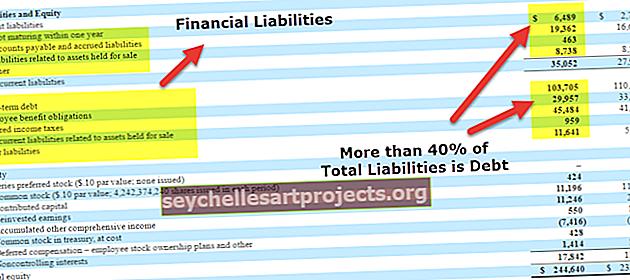 Χρηματοοικονομικές υποχρεώσεις | Ορισμός, Τύποι, Αναλογίες, Παραδείγματα