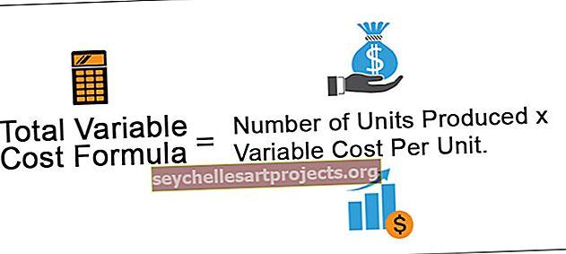 Συνολικό μεταβλητό κόστος