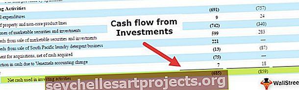 Investeerimistegevuse rahavoog