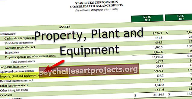 Nekilnojamasis turtas ir įranga (PP&E)