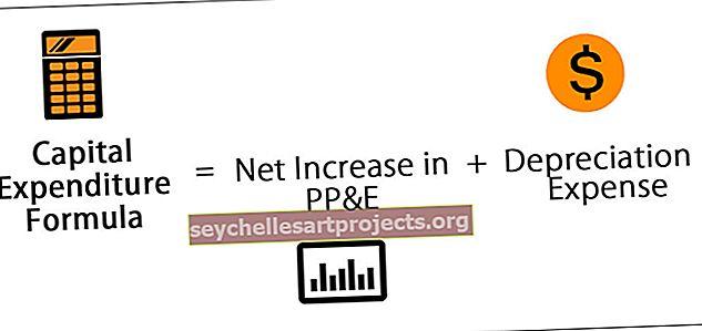 Τύπος κεφαλαιουχικών δαπανών (CAPEX)