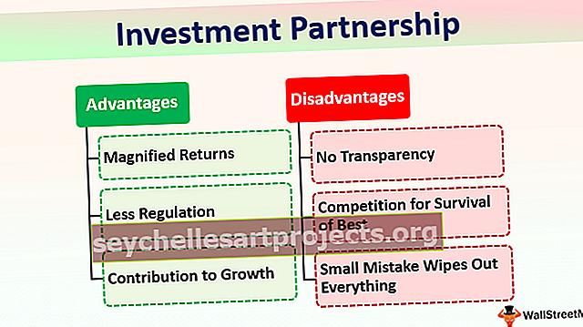 Investiční partnerství