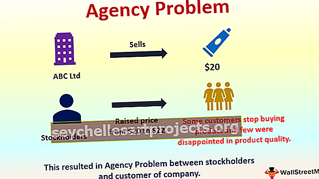 Problém agentury