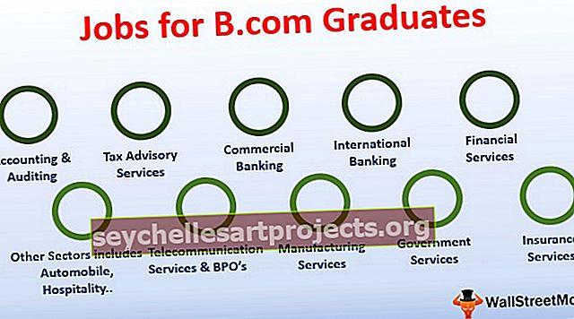 Top 10 pracovních míst pro absolventy B.com (nováčky)
