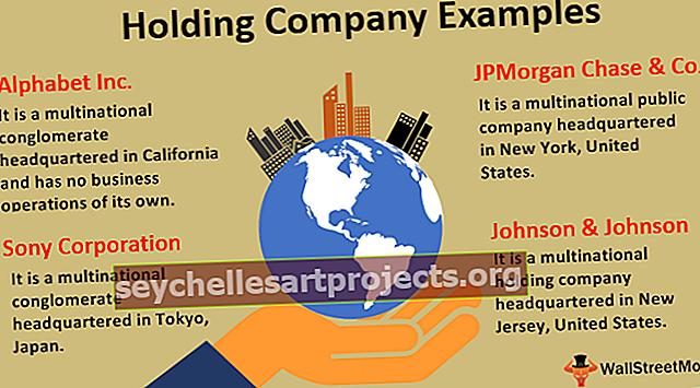 Příklady holdingové společnosti