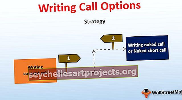 Rašyti skambučių parinktis Išmokėjimas | Pavyzdys | Strategijos