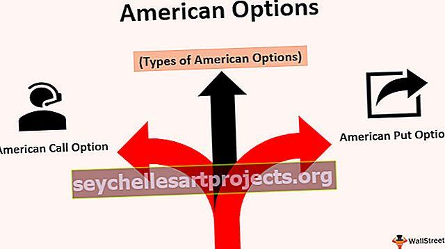Amerikos pasirinkimai