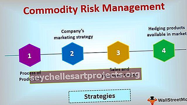 Prekių rizikos valdymas