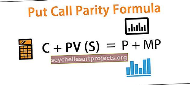 "Įdėkite ""Call Parity Formula"""