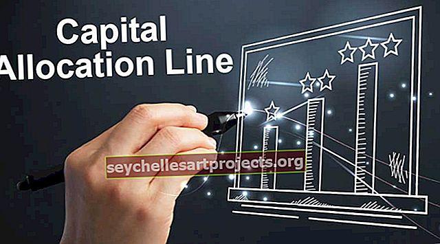 Kapitalo paskirstymo linija