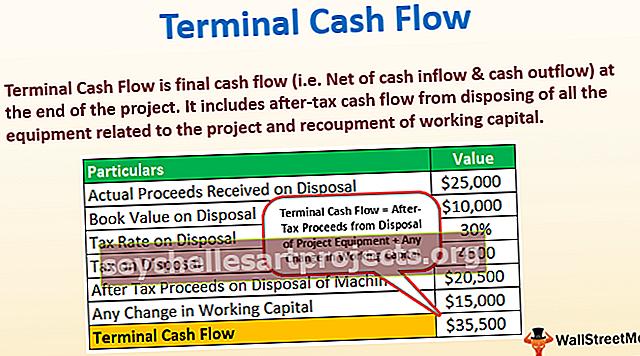 Terminalo pinigų srautas
