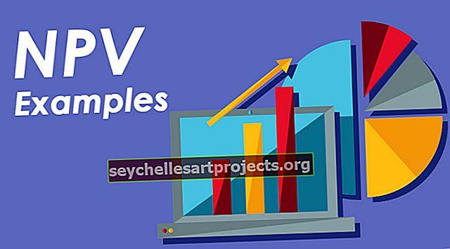 NPV pavyzdžiai