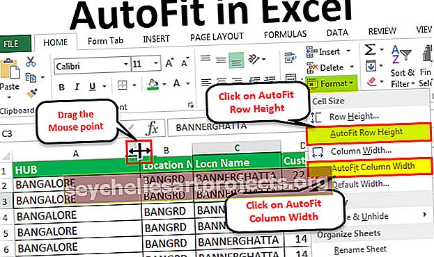 Αυτόματη προσαρμογή στο Excel
