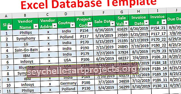 """""""Excel"""" duomenų bazės šablonas"""