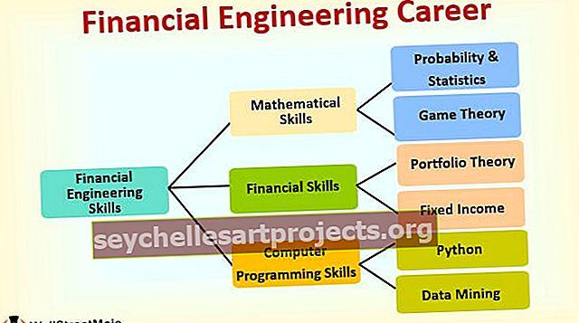 Finantsinseneri karjäärijuhend: programm, töökohad, palk