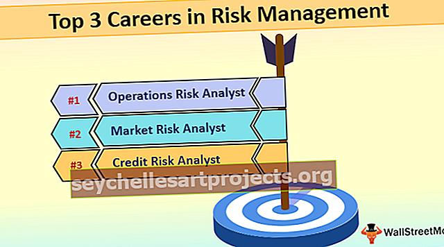 Karjäär riskijuhtimises