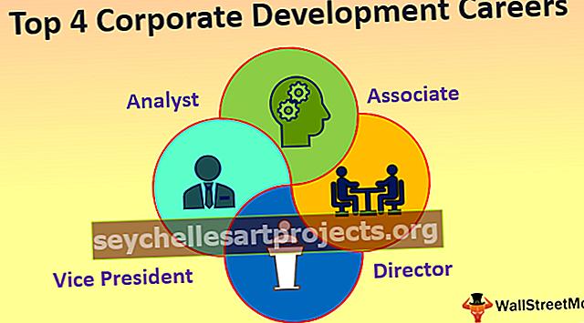 Ettevõtte arendamise karjäär
