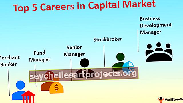 Karjäär kapitaliturul