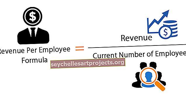 Výnosy na zaměstnance