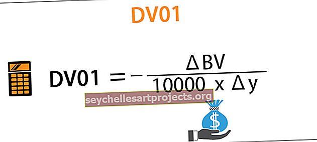 DV01 (dollarin kesto)
