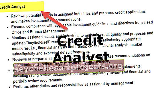 Krediidianalüütiku karjäär
