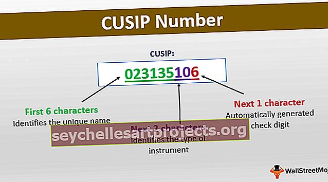 Αριθμός CUSIP