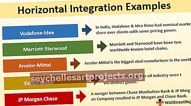 Horisontaalne integratsioon