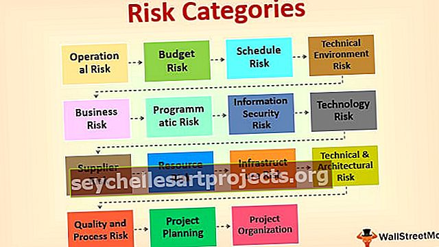 Riskikategooriad