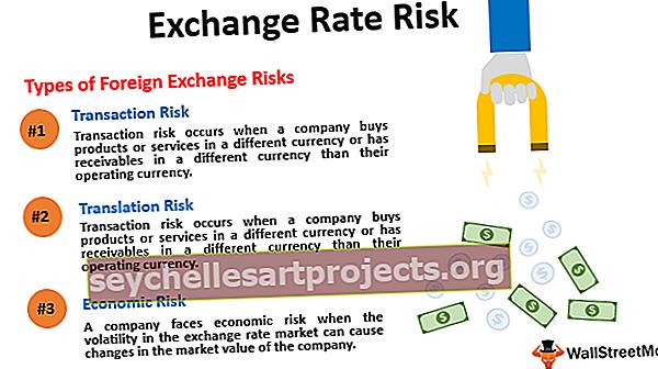 Vahetuskursi risk